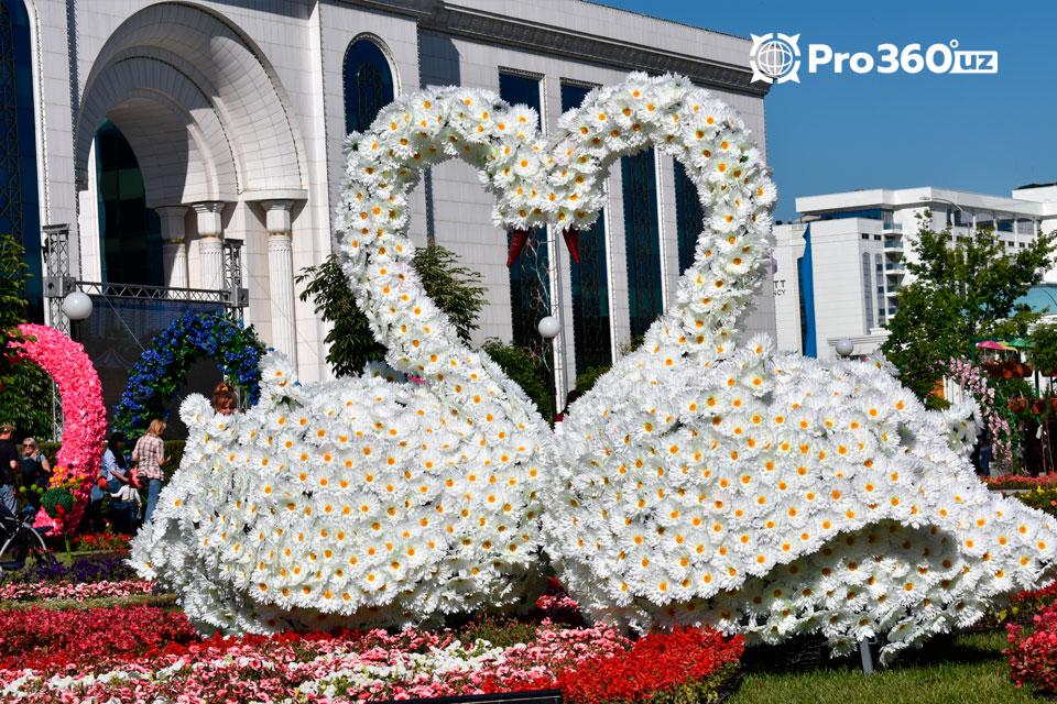 выставка цветов в Ташкенте